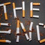 smoke-free Vienna brothel Club Maxim