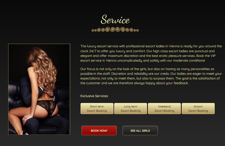 Services at Escort Girls Vienna Agency