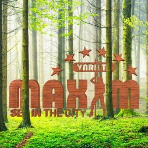Maxim Austria Brothel experience
